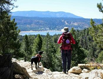 Things To Do In Big Bear | Big Bear Cool Cabins