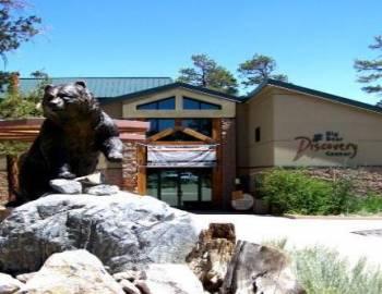 Nature Walks at Big Bear Discovery Center