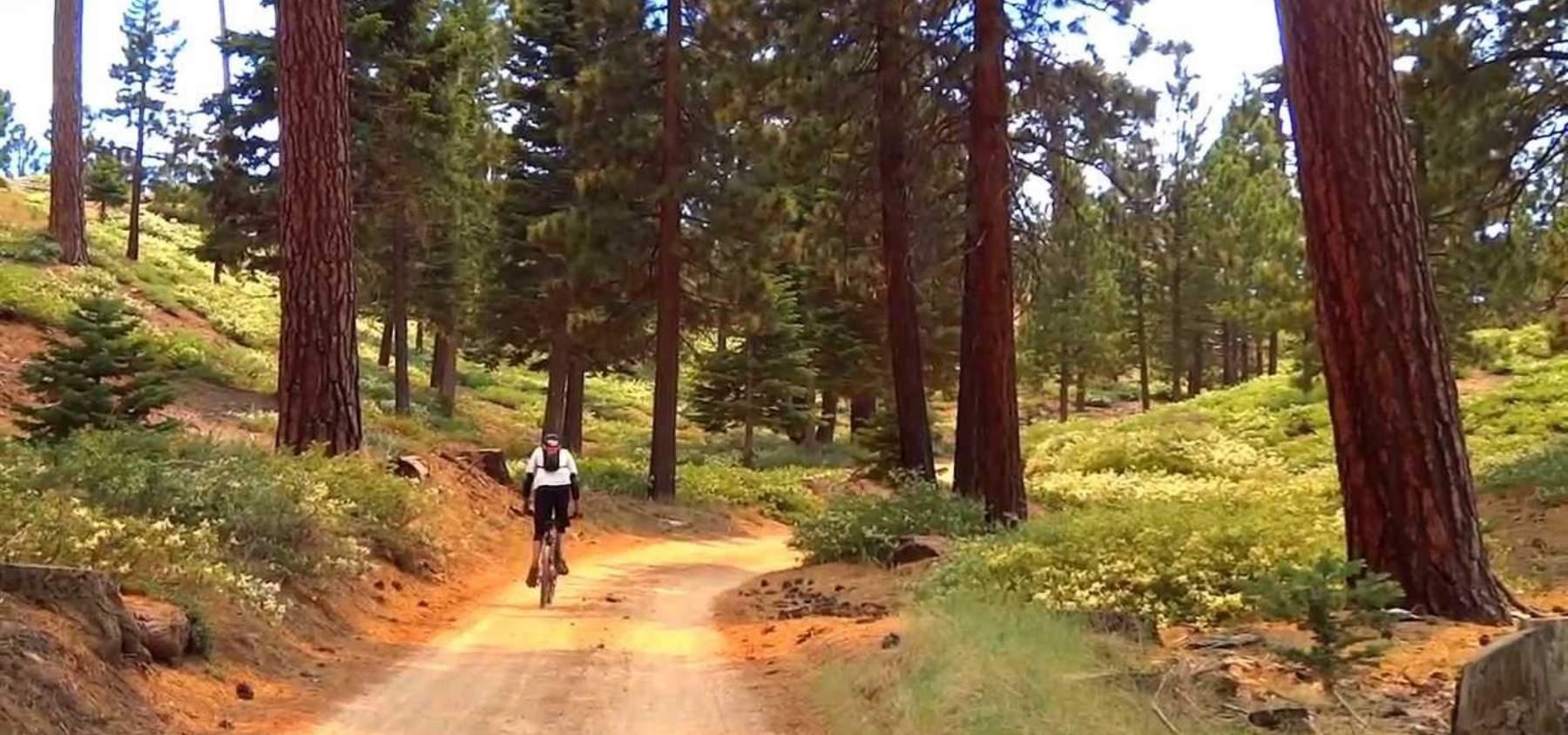 Big Bear Biking