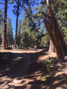 Big Bear Lake, Hiking, California, Big Bear